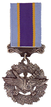 Medal For Military Service to Ukraine